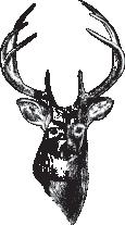 Deer Creek Heights